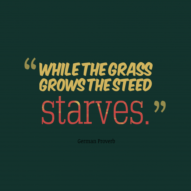 German Wisdom 's quote about . While the grass grows the…