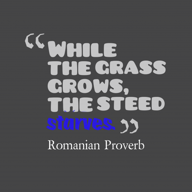 Romanian Wisdom 's quote about . While the grass grows, the…