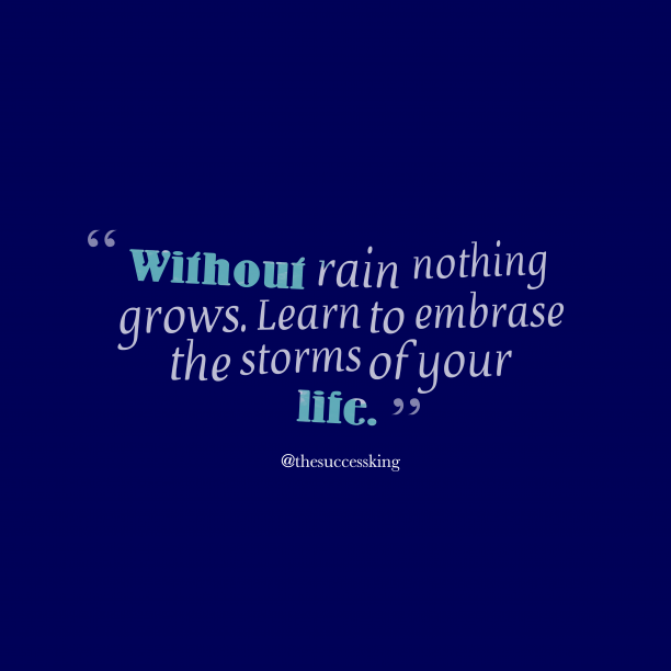 @thesuccessking 's quote about embrase. Without rain nothing grows. Learn…