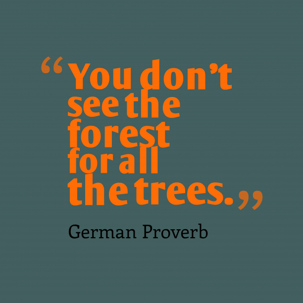 German Wisdom 's quote about . You don't see the forest…