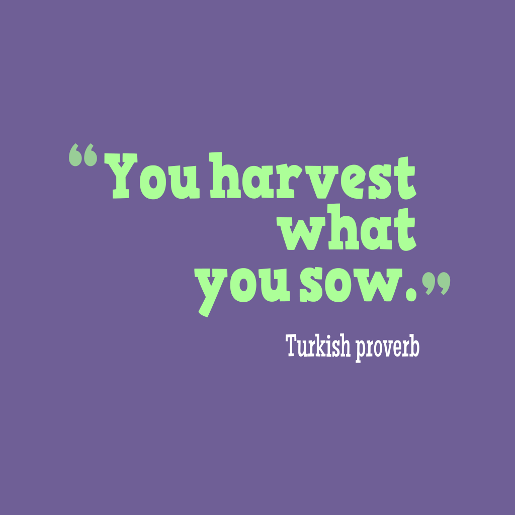 Turkish proverb about harvest.