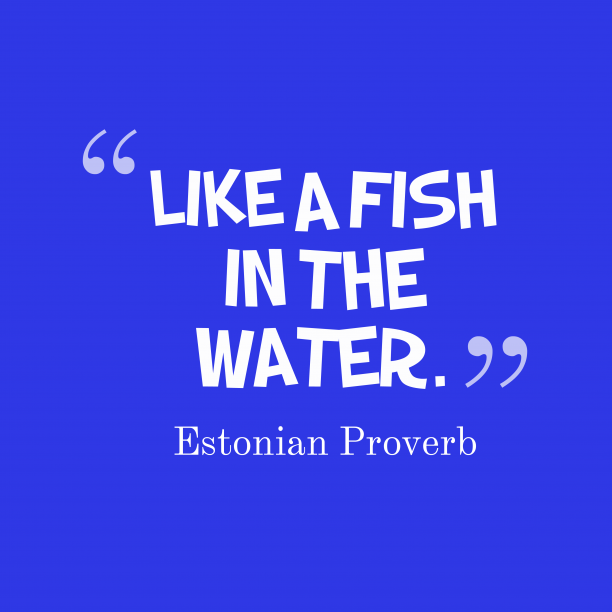 Estonian proverb about situation.