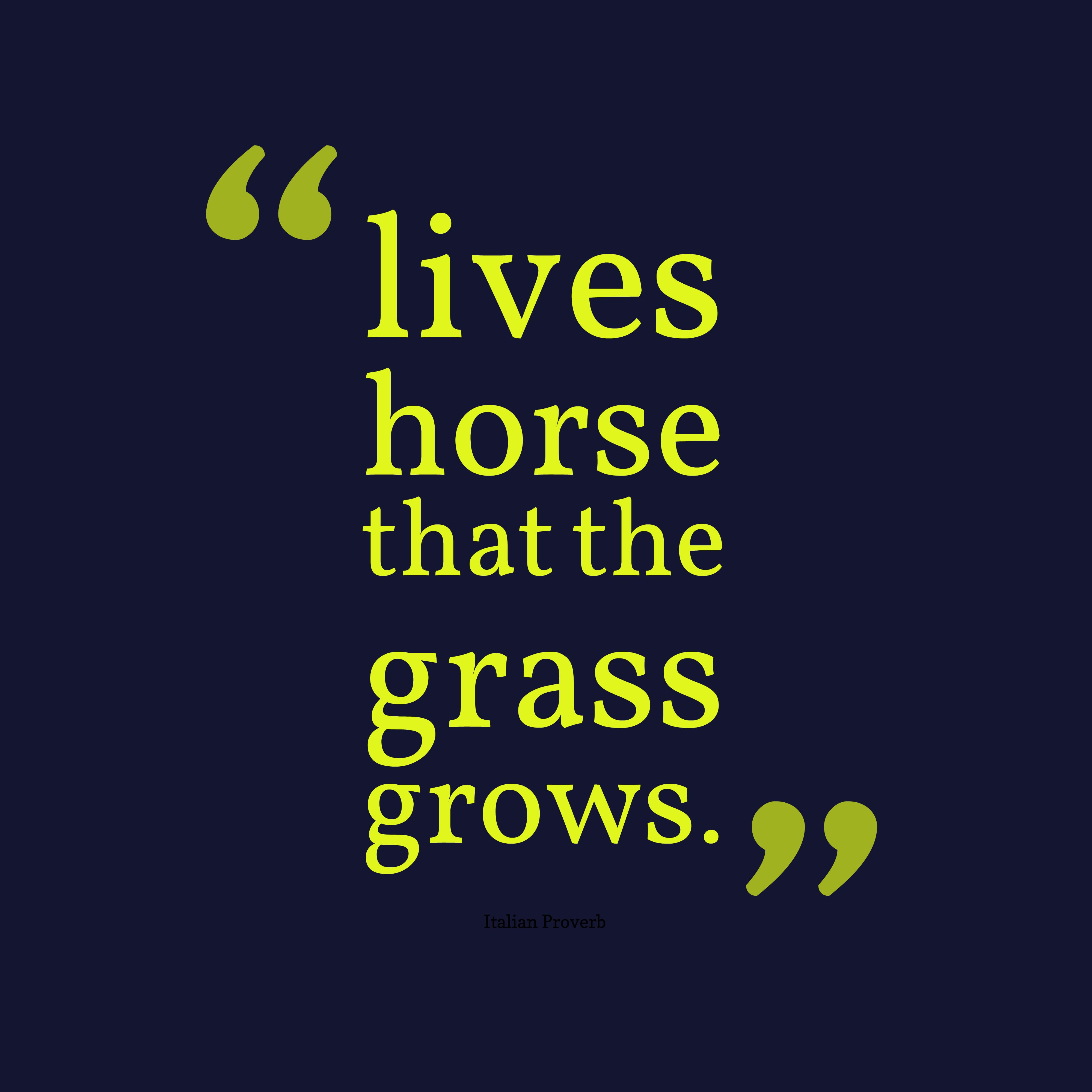 Quotes About Horse