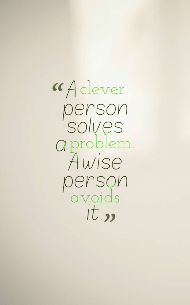 Quotes image of A clever person solves a problem. A wise person avoids it.