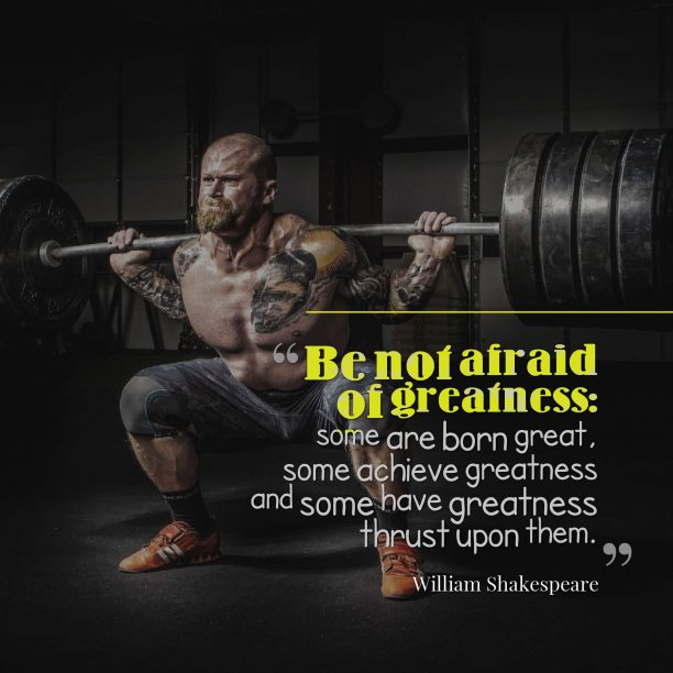 William Shakespeare 's quote about afraid,courage,greatness,responsibility. Be not afraid of greatness:…