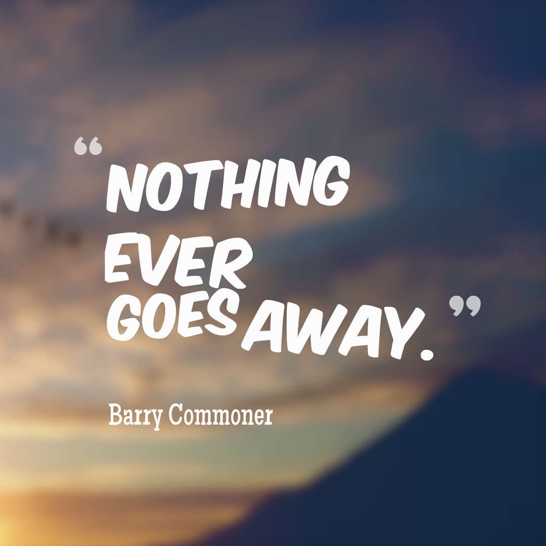 Quotes image of Nothing ever goes away.