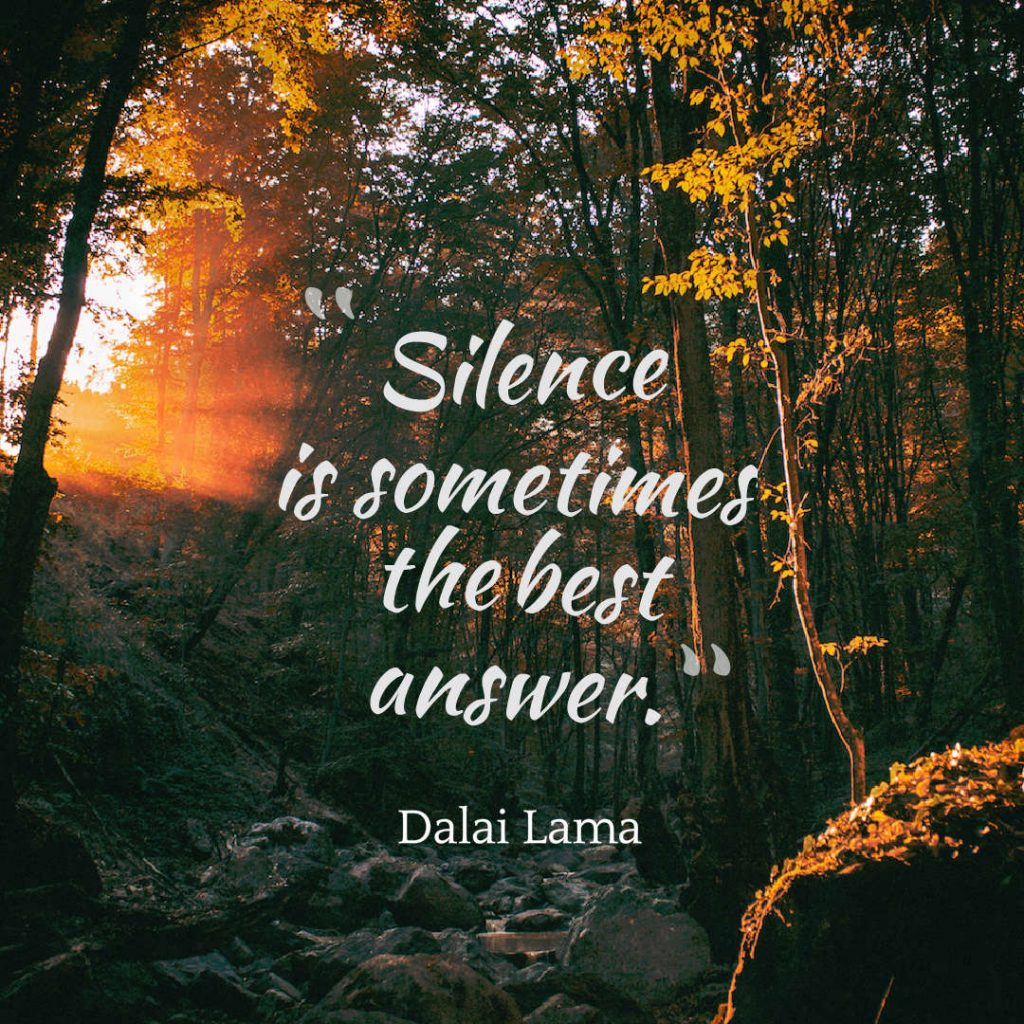 Quotes image of Silence is sometimes the best answer.