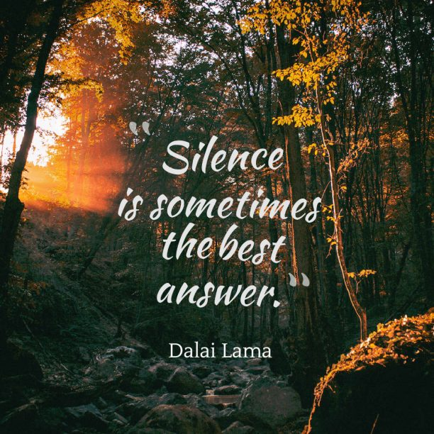 Dalai Lama 's quote about silence. Silence is sometimes the best…