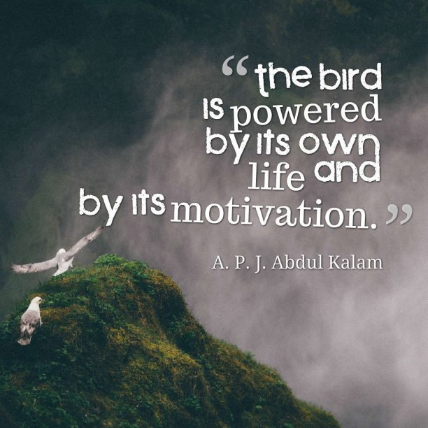 A. P. J. Abdul Kalam quote about motivation.