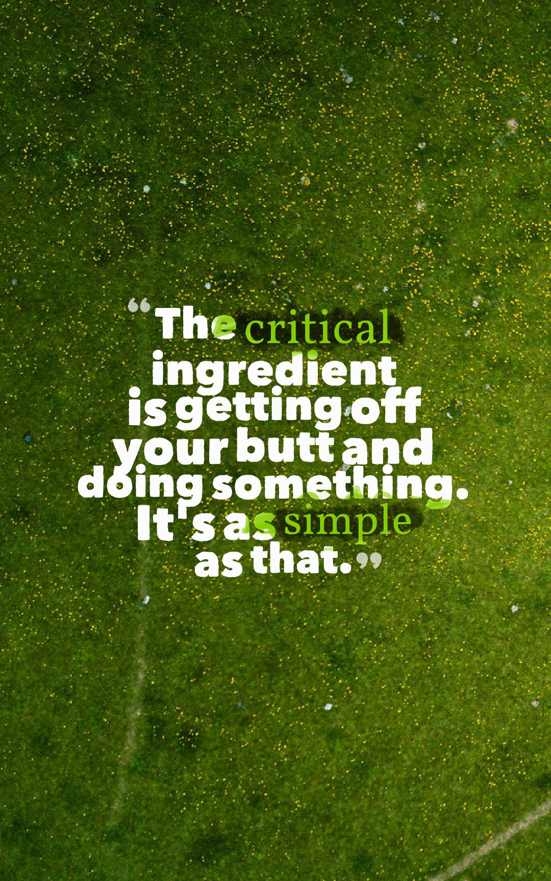 Quotes image of The critical ingredient is getting off your butt and doing something. It's as simple as that.