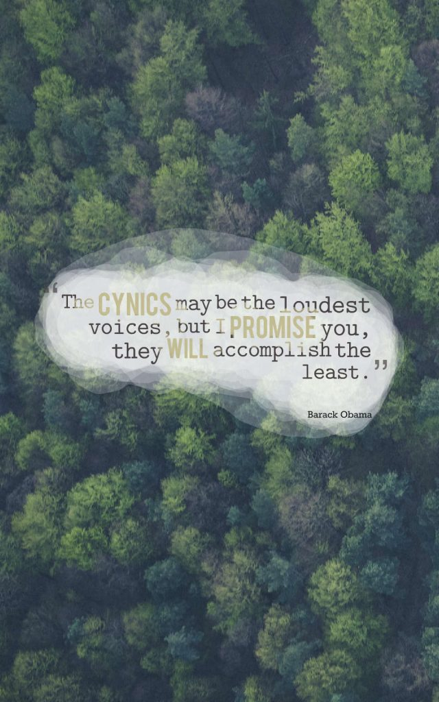 Quotes image of The cynics may be the loudest voices, but I promise you, they will accomplish the least.