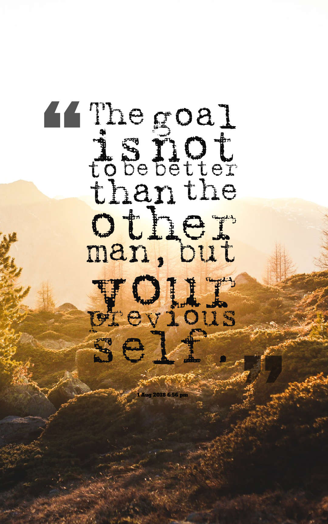 Quotes image of The goal is not to be better than the other man, but your previous self.