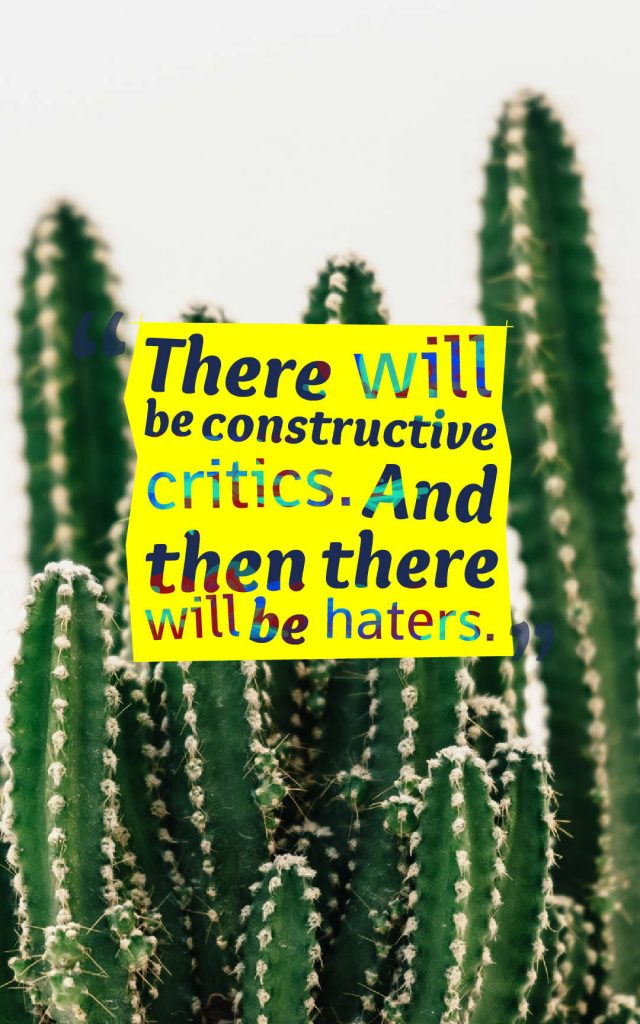 Quotes image of There will be constructive critics. And then there will be haters.