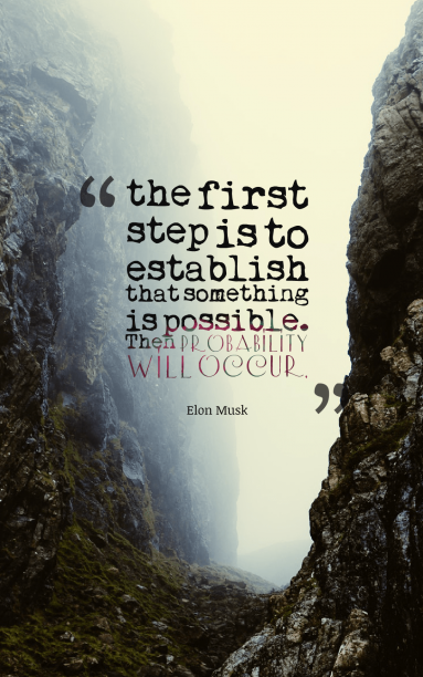 Elon Musk 's quote about courage,possibility,probability,step. the first step is to…